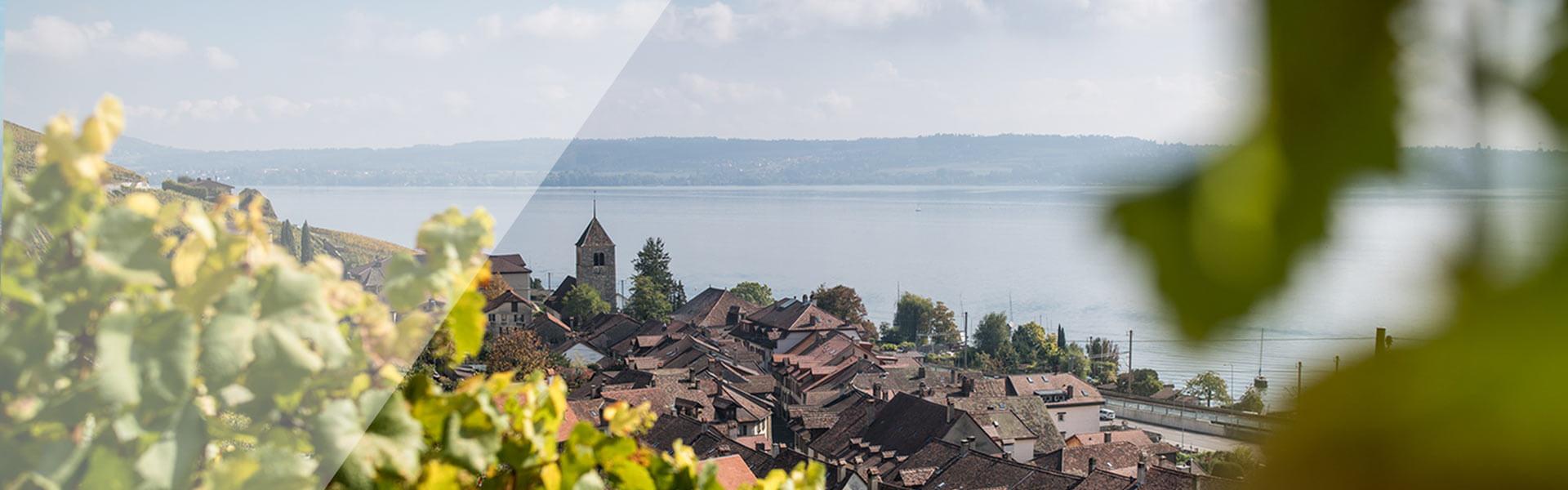 Dorf am Bielersee